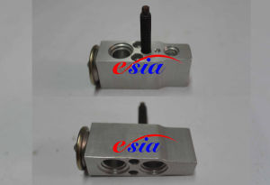 Auto AC Evaporator Expansion Valve for M. Benz/MB/Mercedes Benz 1248301184 pictures & photos