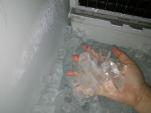 Vertical Stainless Steel Ice Cube Maker pictures & photos