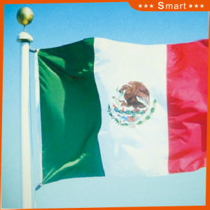 Custom Waterproof and Sunproof National Flag Mexico National Flag Model No.: NF-022 pictures & photos