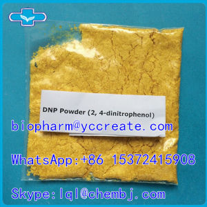 Buy Weight Loss Drugs Powder 2, 4-Dinitrophenol DNP pictures & photos