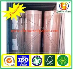 100g White Color C1s Art Paper pictures & photos