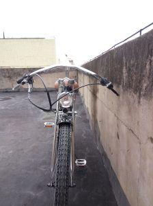 48cc Engine Bike 280PCS Spoke Gas Moror Bicycle (MB-18-3) pictures & photos