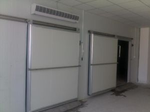 Cold Room for Fruits and Vegetables Walk in 20 Ton pictures & photos