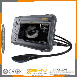 Bestscan S6 Touchscreen Veterinary Ultrasound Scanner Farm Animals Pregnancy Detector pictures & photos