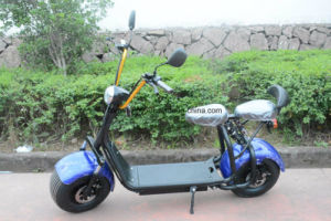 1000W Electric Mobility Scooter with F/R Shocks, 2 Seats 60V/30ah pictures & photos