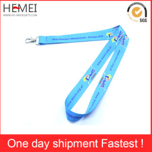 Lanyard with Card Holder, Cheap Lanyard pictures & photos