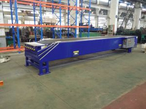 Roller Conveyor/Assembly Conveyor/Sorting Conveyor pictures & photos