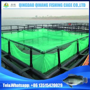 HDPE Floating Cage Fish Farming pictures & photos
