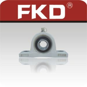 Fkd Bearing/Stainless Steel Bearing+Plastic Block pictures & photos