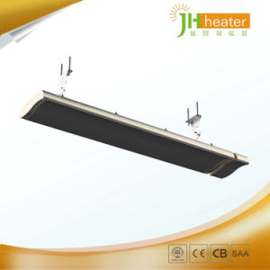Outdoor/Indoor Electrical Heating System Wall Mount Infrared Radiant Heater pictures & photos