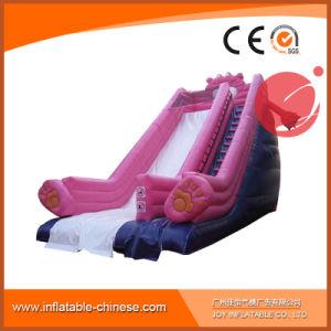 Amusement Park PVC Tarpaulin Large Inflatable Slide (T4-202) pictures & photos