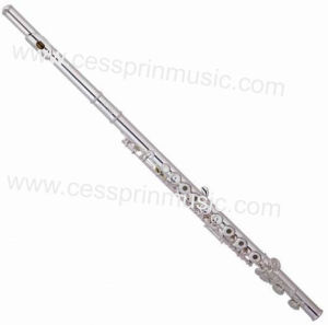 Cessprin Music / Nickel Flute / Flute Wholesales/ Flute Supplier/ (ASFL-046) pictures & photos