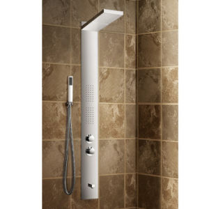 Stainless Steel Front Panel in Brush Finish Concealed Shower Column (K2221) pictures & photos