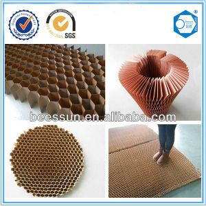 Construction Material Fireproof Paper Honeycomb Core pictures & photos