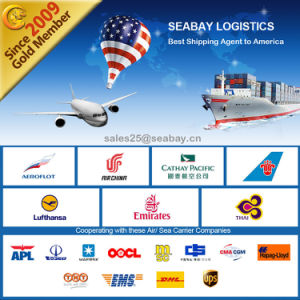Most Reliable Shipping Service Shenzhen to Los Angeles pictures & photos
