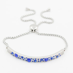 Bar Bracelet with Birthday Stones 316L Stainless Steel with Adjustable Chain pictures & photos