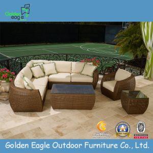 Garden Rattan Sofa Set-Outdoor Furntiure (TY0019) pictures & photos