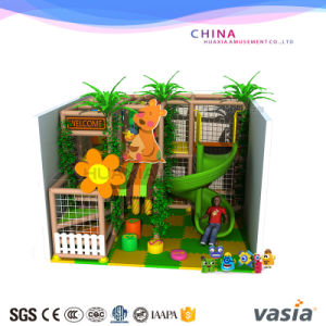 China Vasia Indoor Soft Playground with Ball Pool pictures & photos