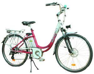 E-Bike (TDF-303Z)