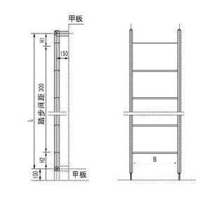 Aluminium or Stainless Steel Vertical Ladder pictures & photos