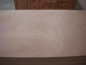 Marine Plywood for Yacht (1220*2440) pictures & photos
