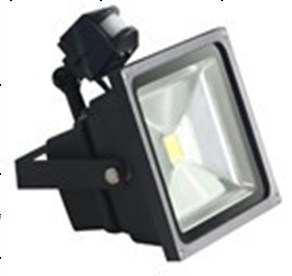 PIR COB Floodlight, Flood Light, Outdoor Lighting pictures & photos