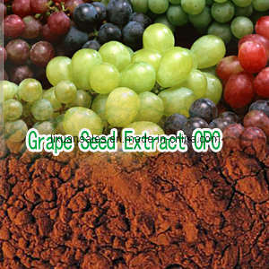 Procyanidin 95% Grape Seed Extract