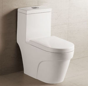 Siphonic One Peice Toilet (D0-A040)