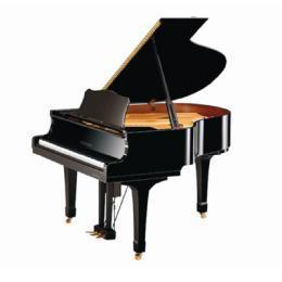 Good Quality Enperor 158 Grand Piano