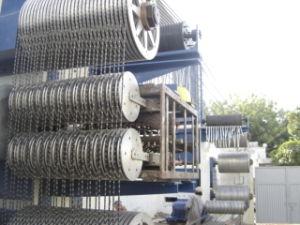 Wire Saw/Multi Wire Saw Machine (B2B003) pictures & photos