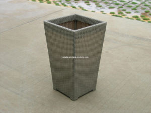 Outdoor Leisure Plants Rattan Flower Boxes pictures & photos