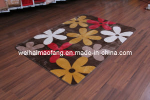 Shaggy Raschel Mink Polyester Carpet (NMQ-CPT006) pictures & photos