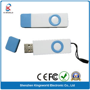 Plastic 2GB USB Flash Drive