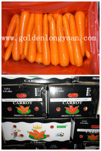 2017 New Crop Carrot with Good Shape pictures & photos