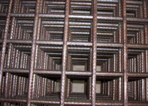 Black or Galvanized Welded Wire Mesh Panel (DHW03) pictures & photos