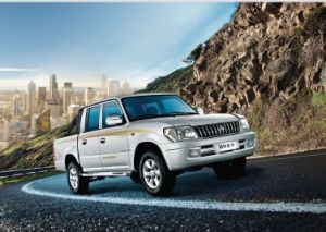 Pickup Truck pictures & photos