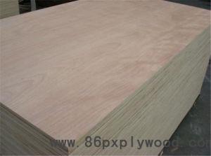 Eucalyptus Hardwood Plywood 15, 18, 24, 30 Mm