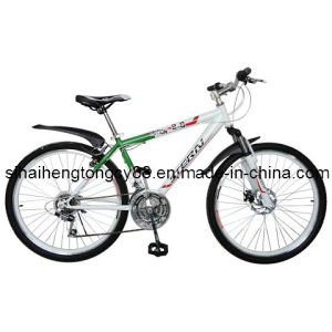 Low Price Mountain Bicycle/Bike for Hot Sale (MTB-020) pictures & photos