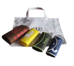 Non Woven Bag (XT-B024) pictures & photos