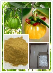 High Quality Garcinia Cambogia Capsule (0#, 00#) pictures & photos