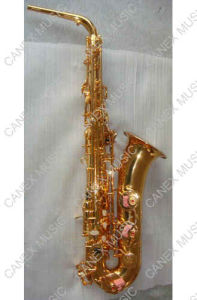 C Melody Saxophone/Popular Quality (SAC-L) pictures & photos