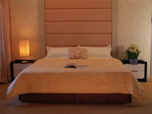 Luxury Hotel Bedding Set (SDF-B011) pictures & photos