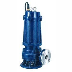 Submersible Pump for Dirty Water (CE Approved) (25 50WQ.) pictures & photos