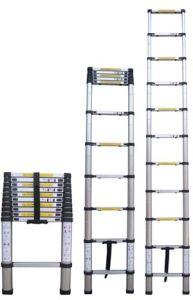 Extension Ladder (TRK-T320)