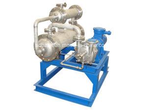 2BW1 Water Ring Vacuum Pump