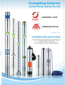 """4""""Submersible Deep Well Borehole Water Pump (100qj6) pictures & photos"""