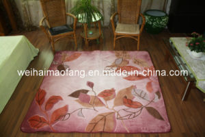 Raschel Mink Polester Carpet/ Mat/Rug (MQ-CP006) pictures & photos