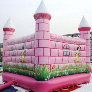 New Inflatable Castle for Amusement Park pictures & photos