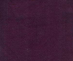 11Wales 100%Organic Cotton Corduroy (QDFAB-8648) pictures & photos