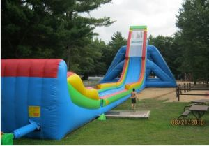 2011 New Hippo Inflatable Slide